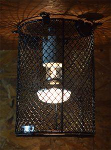 ampoule-chauffante