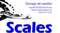 elevage-scales-avignon