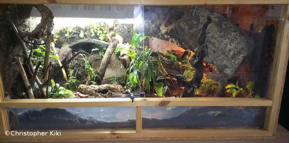 conseils et inspirations pour faire un terrarium naturel. Black Bedroom Furniture Sets. Home Design Ideas