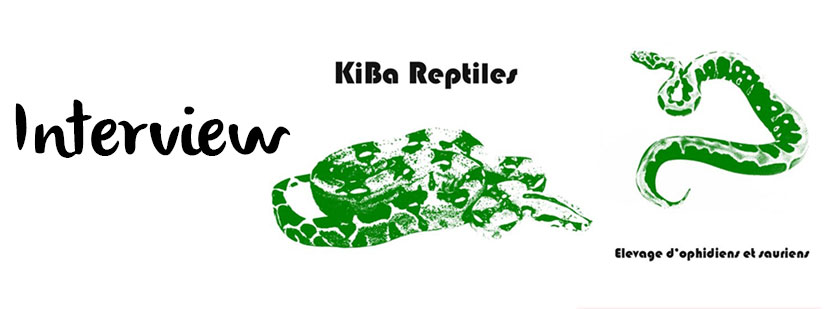 interview-kiba-reptiles