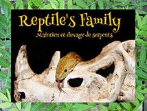 logo-reptiles-family
